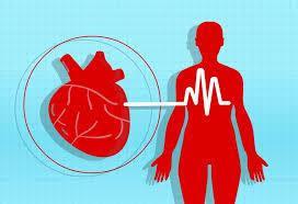 Detonic - para hipertensão - efeito - Portugal - como usar